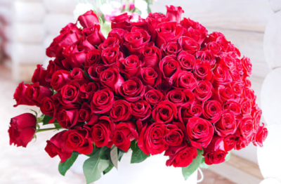 108本赤いバラ